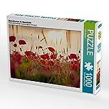 Mohnblumen im Abendlicht 1000 Teile Puzzle quer