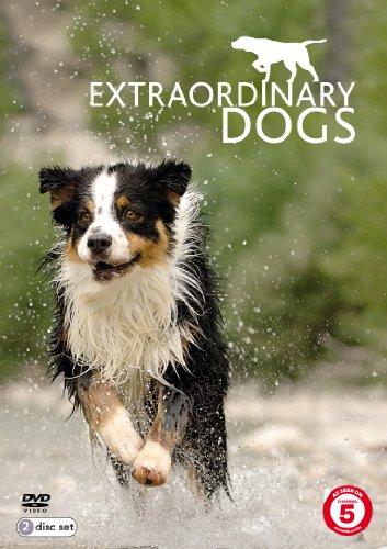 extraordinary-dogs-dvd