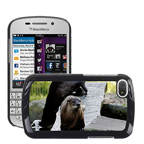 Nur At one's fingertips HOT Lustre Handy PC Hard Case Cover//m00139496 Otter Board Wasser Gehäuse Animal//BlackBerry Q10