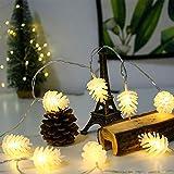 Gyyl Le Pigne Possono Essere Controllate A Distanza Catena Luminosa Con Batteria Impermeabile Led Luci Decorativa Da Interni E Esterni Per Casa Festa Giardino Natale Bar Matrimonio@3M20Led