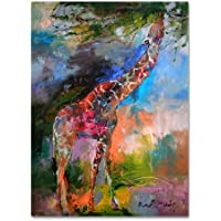 Trademark Fine Art Giraffe by Richard Wallich, 18x24-Inch preiswert