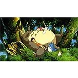 My Neighbor Totoro (43inch x 24inch / 107cm x 60cm) Silk Print Poster - Seide Plakat - B5C004