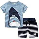 Bekleidungsset Sommer Babykleidung Kinder Baby Jungen Cartoon Tier T-Shirt Tops +Shorts Hosen Outfits Set Kleidungsset Neugeborenen Baby Kleidung Set (110, Blau)