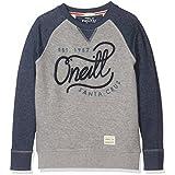 O'Neill Santa Cruz Sweat-shirt Garçon Silver