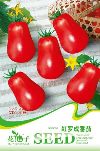 Livraison gratuite 3 Packs 60 Of Seeds Red Luo tomate, Lycopersicon esculentum Mill Seeds C103