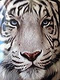YISUMEI Decke 100x150 cm Kuscheldecken Sanft Flanell Weich Fleecedecke Bettüberwurf Weißes Gesicht Tiger