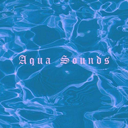Aqua Sound Der Beste Preis Amazon In Savemoneyes