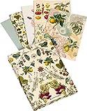 Kew Gardens: Grußkarten-Set