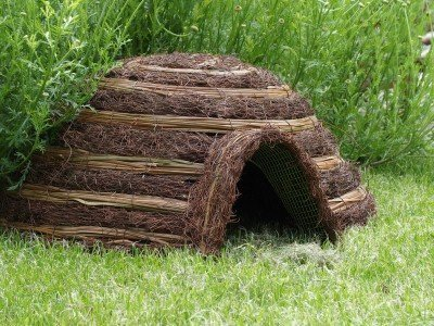 2-x-igloo-hedgehog-house