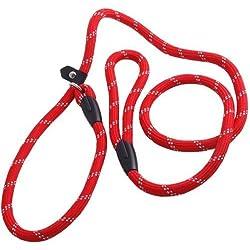 Westeng Haltbarer Hundeleine aus Nylon, Trainingsleine, Verstellbare Schlaufe, 1.2 m (Rot)