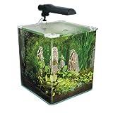 Fluval Flora Aquarium Kit für Wasserpflanzen für Fluval Flora Aquarium Kit für Wasserpflanzen