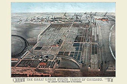 Union Stockyards (Buyenlarge 0-587-23719-8-G1827 Giclée-Kunstdruck Great Union Stockyards of Chicago, 45,7 x 68,6 cm)