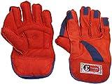 #2: VIRLOK Wicket-Keeping Gloves