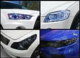 Blau Scheinwerfer Tint 2000mmx300mm–Blau Scheinwerfer und Nebelscheinwerfer Tönung–Best Tint auf