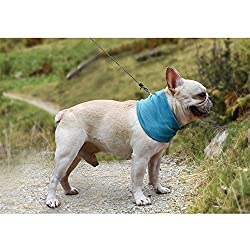 EDTara Summer Pet Instant Cooling Scarf Breathable Towel Wrap Dog Collar by EDTara