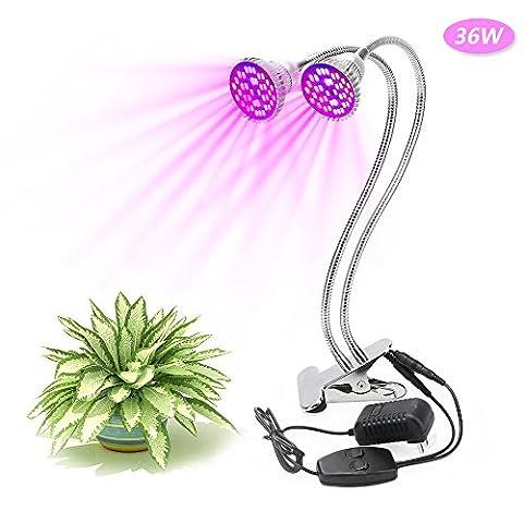 XJLED LED Pflanzenlampe 36W dual Kopf Pflanzenleuchte Voll Spektrum Pflanzenlicht Wachstumslampe Klemmleuchten mit 360 Grad einstellbar Flexible Gooseneck für Büro Haus Garten Aquatische Pflanzen Blumen Veg Sämling