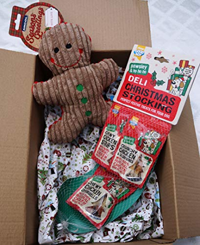 Paradise Pets CHRISTMAS DOG TOY GIFT BOX WITH SQUEAKY PLUSH GINGERBREAD MAN & DELI TREAT FILLED STOCKING