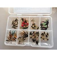 50Plus Selección de moscas húmedas mosca pesca de moscas para trucha de más de 50en caja pack # 9