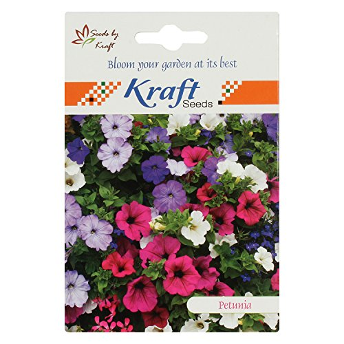 Petunia Multiflora Mix Flower Seeds (Pack of 5) by Kraft Seeds