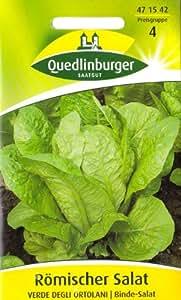Römischer Salat, Verde Degli Ortolani, ca. 500 Samen