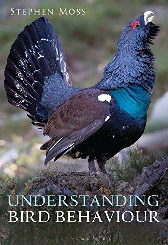 Understanding Bird Behaviour (English Edition)