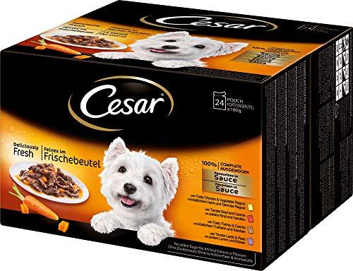 Cesar Hundefutter Feines im Frischebeutel, 2 er Pack (2 x 24 Frischebeutel x 100g)