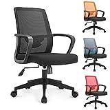 Lv. life Ergonomic Office Chair High Back Mesh Desk Chair,Black
