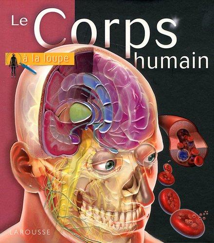 Le Corps humain par Linda Calabresi