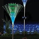 Solar Glasfaser Lampe 1Set von 2LED Leuchten zum Garten Terrasse Farbe ändern Dekoration (Edelstahl + Kunststoff, schwarz)