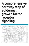 A comprehensive pathway map of epidermal growth factor receptor signaling (English Edition)