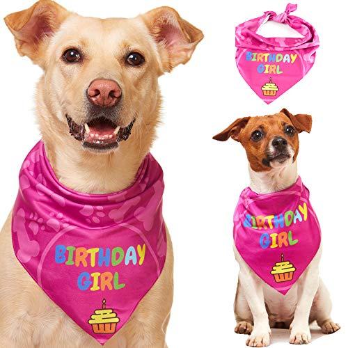 Odi Style Dog Bandana Girl für Hund Geburtstag - Hund Geburtstag Bandana für kleine mittelgroße große Hunde Halstuch für Hunde Welpen Geburtstag Party Happy Birthday Girl Dog Bandana Pink