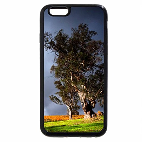 iphone-6s-plus-case-iphone-6-plus-case-vineyard-under-stormy-skyies