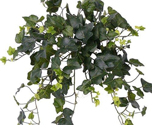 Efeu Hedera Gala, 180 Blätter, mit UV-Schutz – Kunstpflanze Kunstbaum künstliche Bäume Kunstbäume Gummibaum Kunstoffpflanzen Dekopflanzen Textilpflanzen Textilbäume Pflanzen