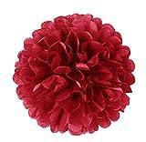 6er Set farbige Pompoms Rot 25cm Seidenpapier Blumen