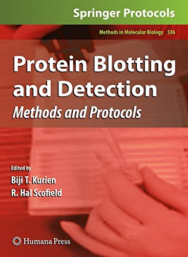 Protein Blotting and Detection: Methods and Protocols (Methods in Molecular Biology, Band 536)