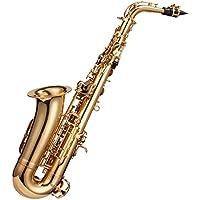 Windsor Altsaxophon komplett mit Koffer, Goldlackiert [UK import]