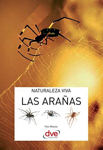 Las arañas por Yves Masiac