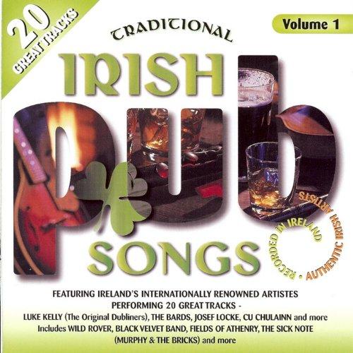Traditional Irish Pub Songs, V...