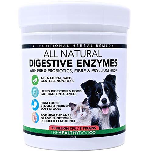 Probióticos, Prebióticos y Enzimas Digestivas Para Perros | 100% Natural 250g |...