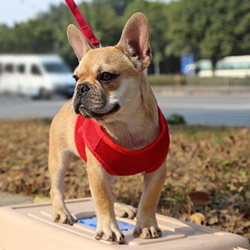 Sharplace Hundegeschirr weich Brustgeschirr einfach sicher Kontrolle bequem für Hunde Haustier, Farben und Größen Wählbar - Rot, XS