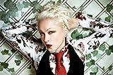 Cyndi Lauper Poster Krawatte 28cm 4327,9x 43,2cm