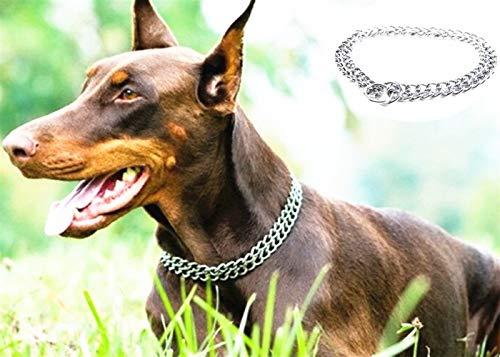 JYHY Hundehalsband, luxuriös, mit P-Kette, Eisen, Metall, Doppelkette, Reihenhals zum Wandern, Training, Kleine mittelgroße und große Hunde,50cm