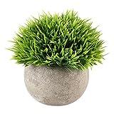 Künstlicher Baum Kunstblumen Künstpflanzen Mini, Biback Simulation Pflanze Ornamente Blume Ball Gras Ball Topf Dekoration Kunststoff Grünen Gras Pflanzen