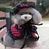 Haustier Hat Sunbonnet, Hund Umhang, Asnlove Kostüm Pet Hundehut und Schal Kleiner Kostüm Set Kariertes Muster für Frühling und Sommer