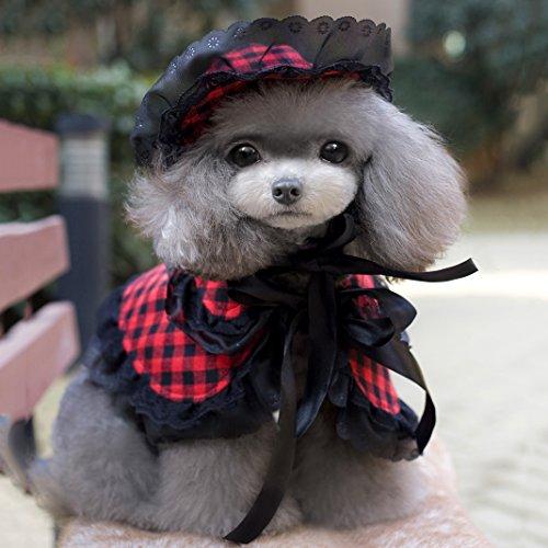 et, Hund Umhang, Asnlove Kostüm Pet Hundehut und Schal Kleiner Kostüm Set Kariertes Muster für Frühling und Sommer (Elf Kostüm Für Hunde)