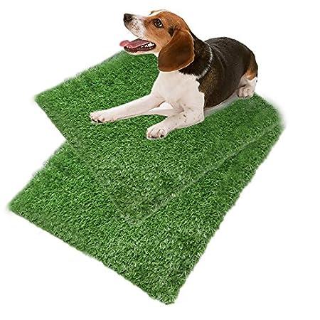 Everley Hutt Hundetopfmatte Training Tray Pad Hundetoilette Indoor Puppy Training Pad Hundetopf Pet Training Grass Mat…
