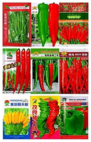 Shoopy Star Jardin des graines de concombre sans OGM des semences potagÚres bricolage environ 100 particules