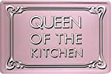 Queen of the kitchen - Funny Spruch witzig 20x30 cm Blechschild 1630