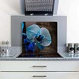 gsmarkt Herdabdeckplatten Ceranfeldabdeckung Spritzschutz 60x52 Blumen Blau Orchidee