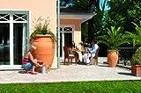 Regentonne Amphore im Garten